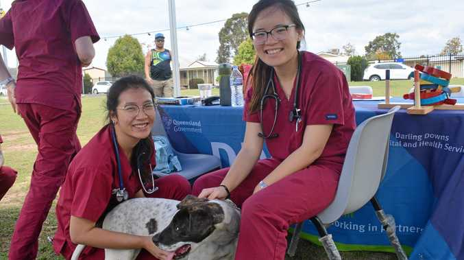 CHECK-UP: University of Queensland veterinary students Elaine Lin and Angela Tse tend to Kimba at the Cherbourg community day for the visiting vet program on Tuesday October 9.