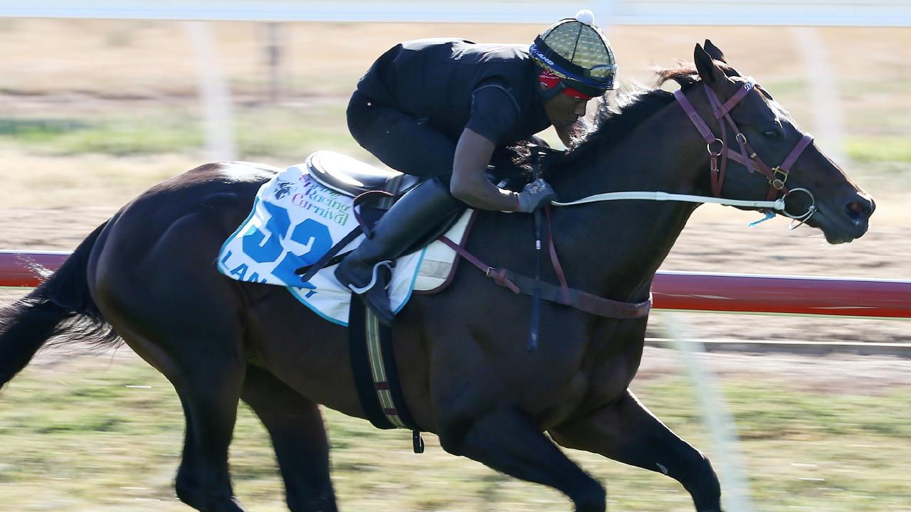 The Darren Weir trained Lord Langley at Werribee. Pic: Michael Klein