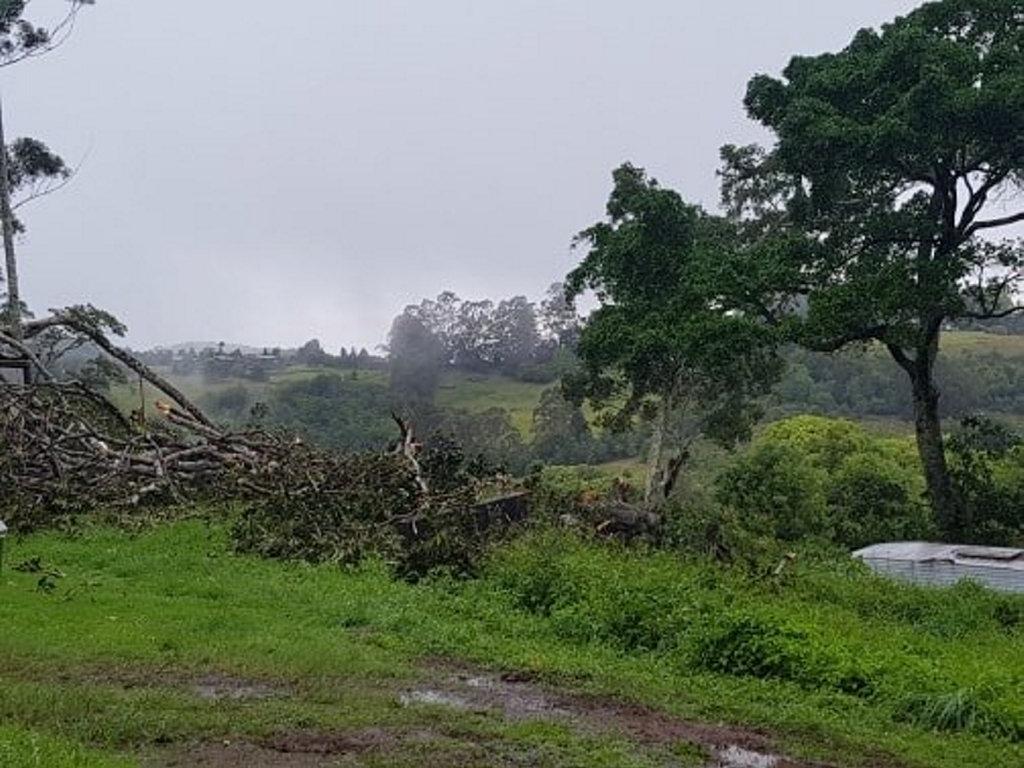 Storm damage at Federal.
