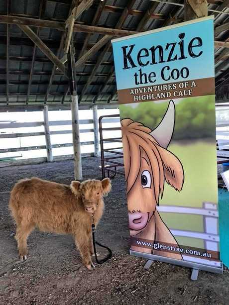 Erica Smith's book 'Kenzie In Search Of A Friend' is based on her love for cows and her experience in the CQ cattle industry.