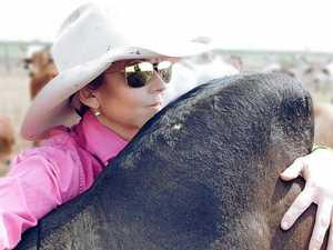 Grazier's prestigious award taking CQ cattle to the US