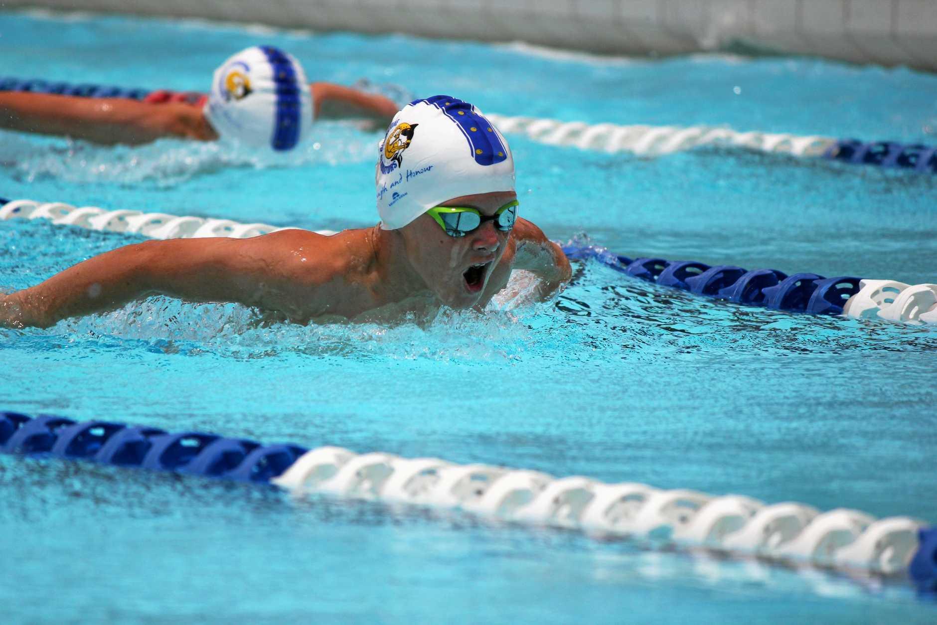 BUTTERFLY WINNER: Gladstone Gladiator Oscar Wemmerslager prepares for Saturday's swim meet.