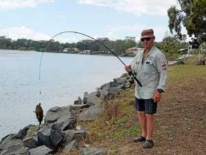 Venomous stonefish hooked off Fraser Coast beach