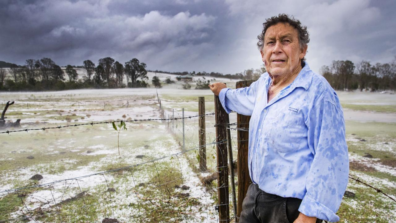 Farmer Dave Richardson's paddocks resembled snowfields after the hailstorm at Long Flat, south of Gympie. Picture: Lachie Millard