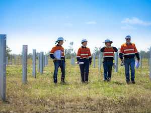 SOLAR FARM: Opportunities in store as on-site work begins