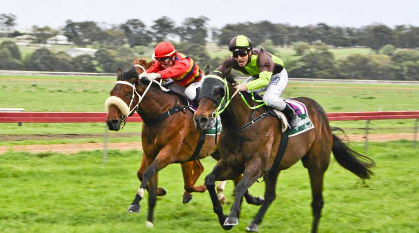 Josh Oliver on board Rhyme Nor Rhythm beaten by Ben Looker on Belflyer in the Warwick Cup at  Allman Park. Saturday, 14th Oct, 2017.