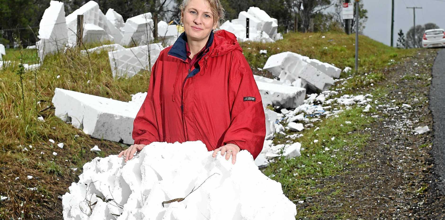 Denise Kapernick from GJ Gardner Homes on clean up after storm.
