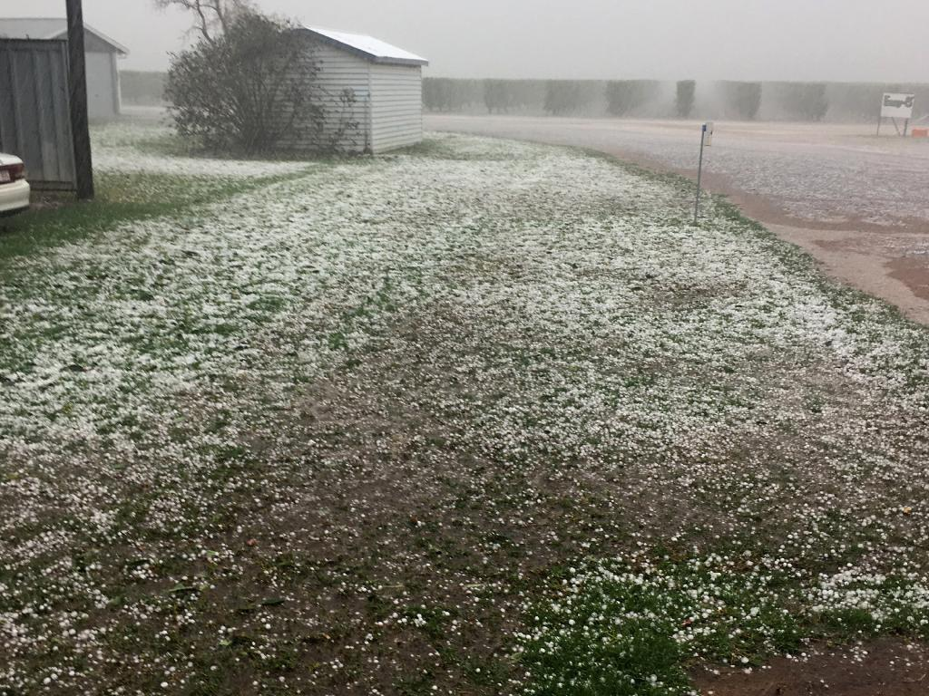 Hail damaged a Queensland farmer's peach and nectarine orchard. Picture: Shane Francis