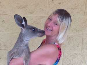 Kangaroo attack: Family tried fighting roo with shovel