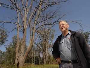 Clive Berghofer raises millions at clearance auction