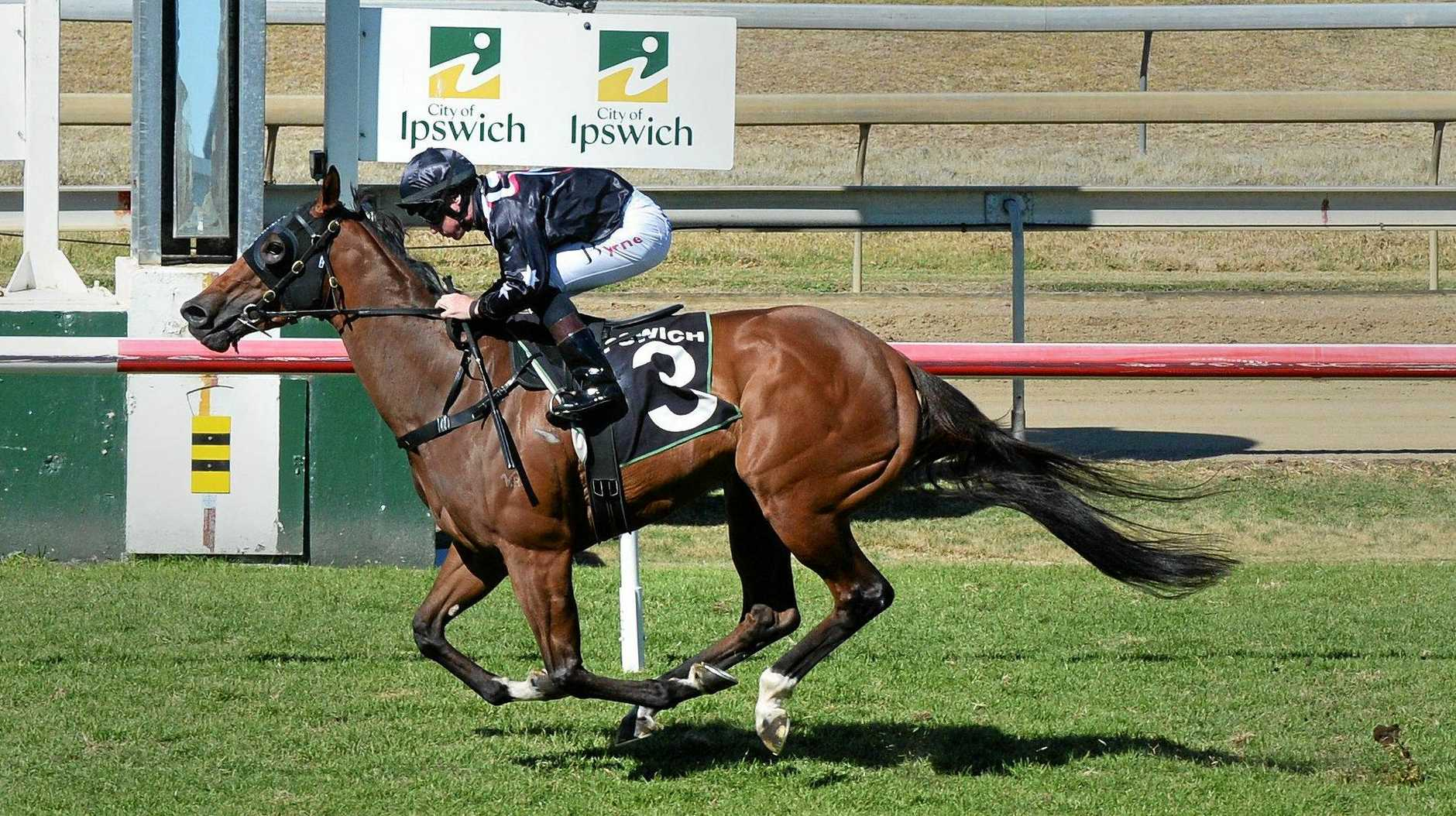 Splitter wins the Follow ITC @Ipswichturfclub race at Ipswich Racetrack on Wednesday.