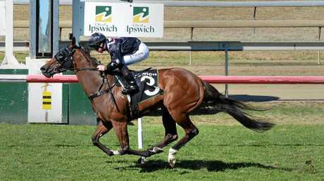 Splitter wins the Follow ITC @Ipswichturfclub race at Ipswich Racetrack on Wednesday.