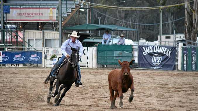 THE BEST: Pete Comiskey and Destined To Be, pictured in Warwick last year, have combined to win the Condamine Bell Campdraft.