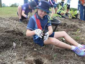 Kilila Wilson (9) is helping her school, Mackay