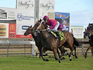 Stanthorpe Cup program draws strong entry list