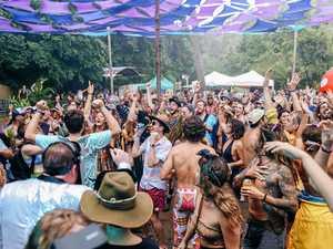 Jungle Love celebrates milestone with grander site