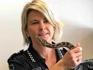 Carpet python seized from Bundy home