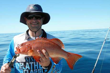 Luke hooked this coral trout recently.