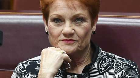 Pauline Hanson certainly got the publicity she was after. Pic: AAP