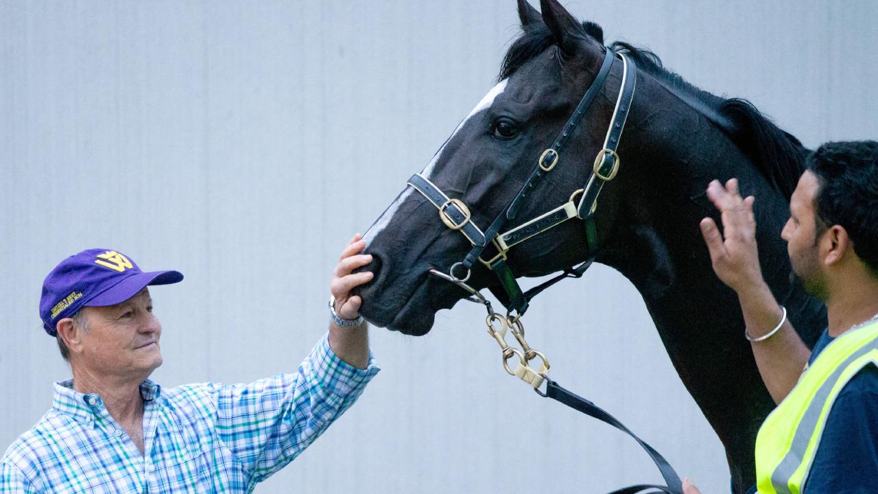 Trainer David Payne wasn't worried by Ace High's workout at Caulfield. Picture: Mark Stewart