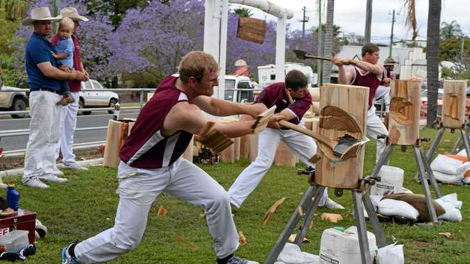 CHIPS FLY: Jake Dingle in action at the Mt Perry Axeman and Sawyers' 24th annual woodchop at the Mt Perry Hotel on Saturday.