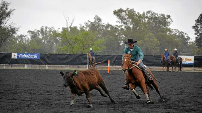 FIERCE COMPETITION: The Condamine Bell Campdraft entranced crowds and attracted the best riders in the nation.