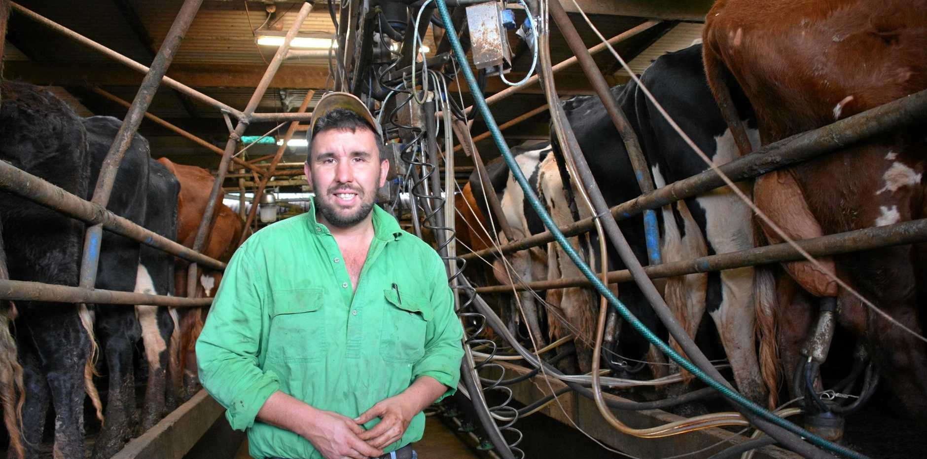 DAIRY DILEMMA: Coolabunia dairy farmer Damien Tessmanm isn't convinced Woolworths' drought relief milk is a long-term answer to the industry's problems.