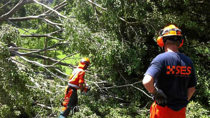 The local SES unit cleared trees from the highway at Urunga recently.  File photo