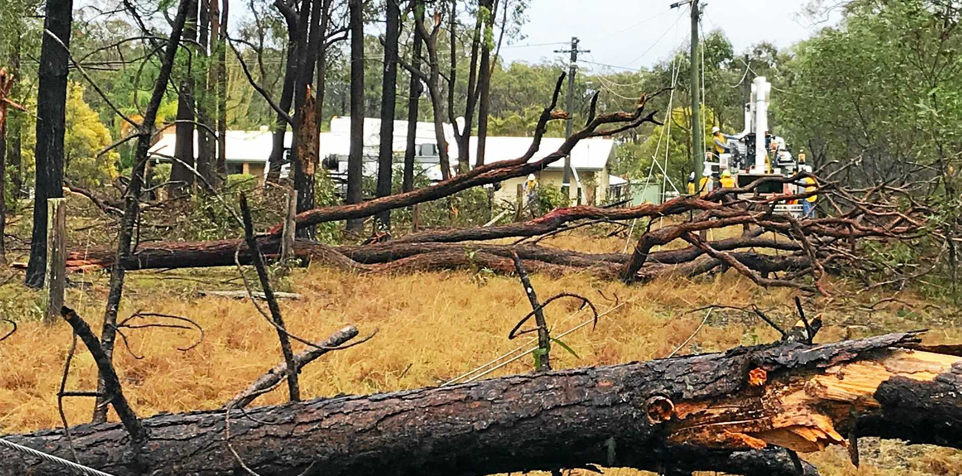 Ergon Energy's restoration effort following severe storms which swept across parts of the Fraser Coast and South Burnett last week has been described as a tremendous success.