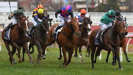 Kings Will Dream (left) ran third to Humidor in the Memsie Stakes. Picture: Getty Images