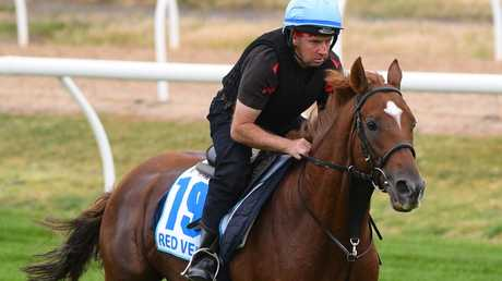 Red Verdojn has thrived at Werribee. Picture: Getty Images