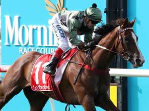 Perfect draw keeps Spicer's Cup dream alive
