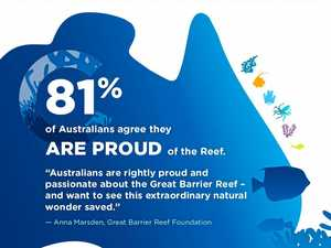 The Observer: Infographics about the Reef