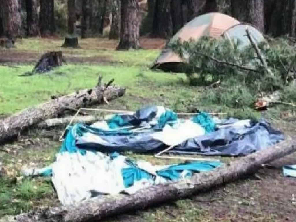 The family holidaying near Perth is struggling to recover after a pine tree fell on their tent. Picture: 9 News