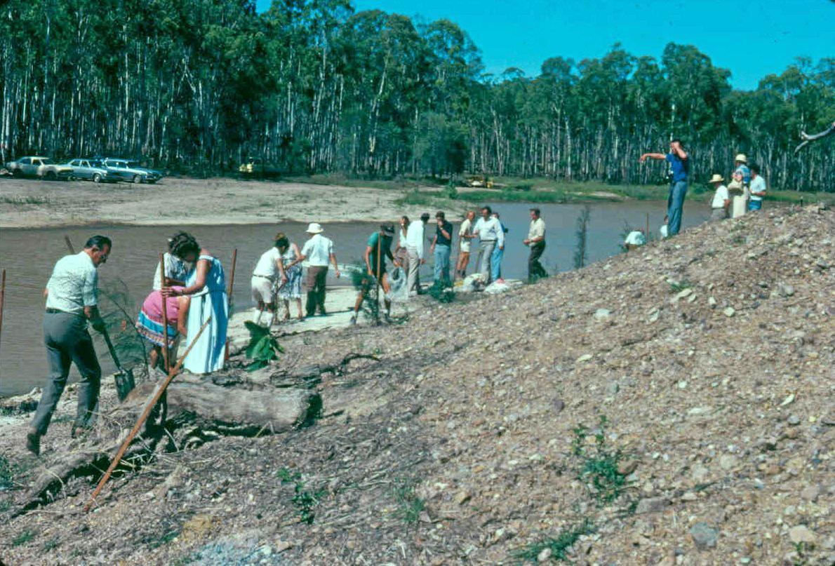 FLASHBACK: Early lake edge tree planting at Tondoon Botanic Gardens.
