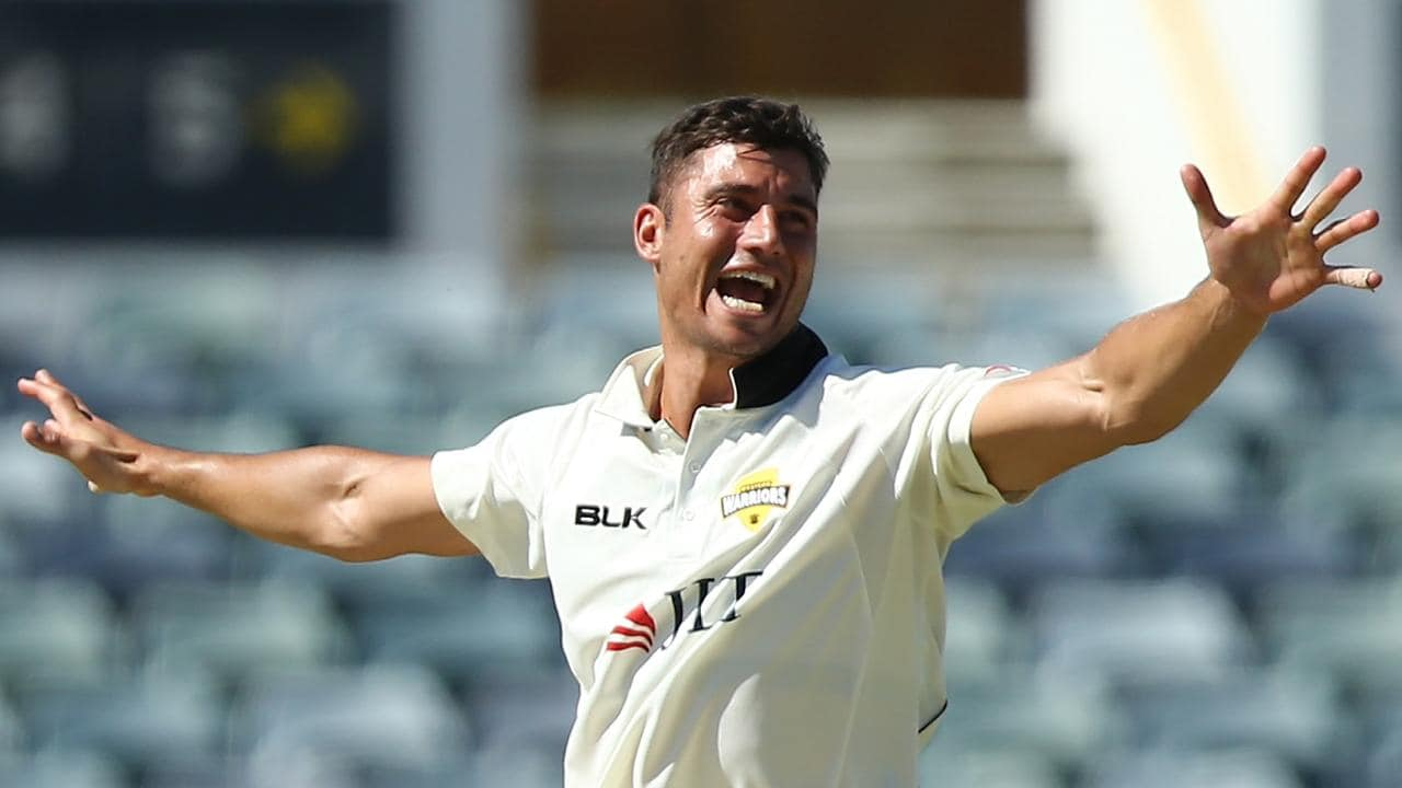 Shane Warne has called for Marcus Stoinis to make his Test debut.
