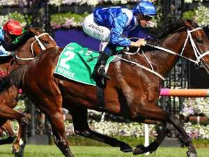 Winx, the accidental champion