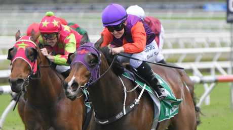 The Lion scored an impressive win in the TAB Highway at Randwick. Picture: AAP