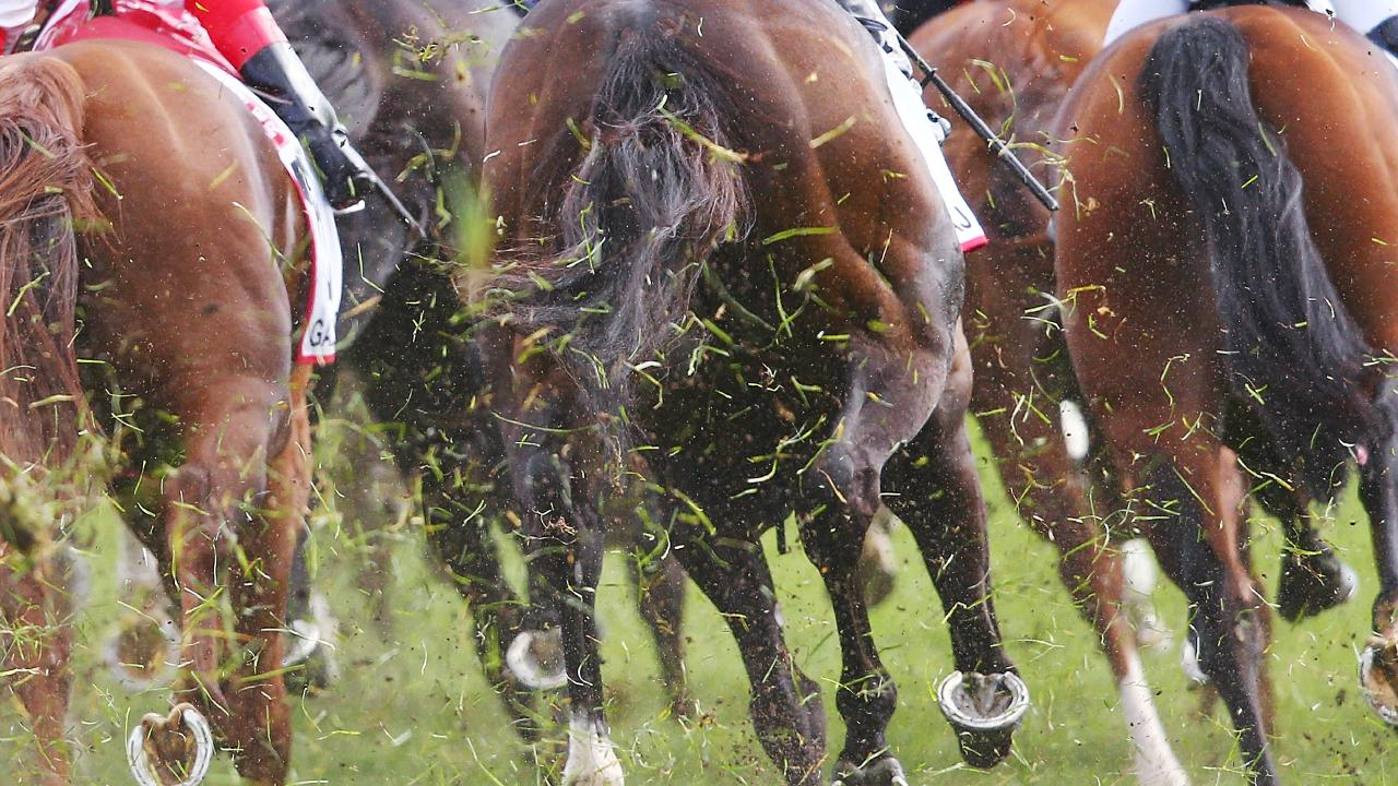 Brad Rawiller and Brian Higgins have been injured in a fall at Cranbourne.