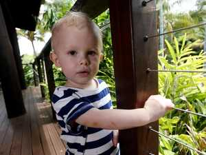 Huge python attacks Queensland toddler