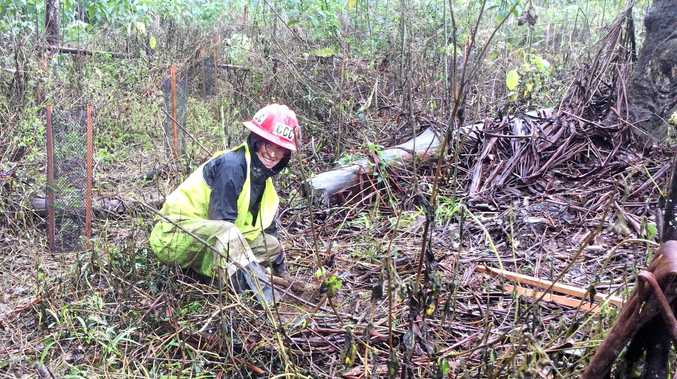 Around 400 trees will be planted at Bucca Creek this week as part of a six year project to conserve the area.