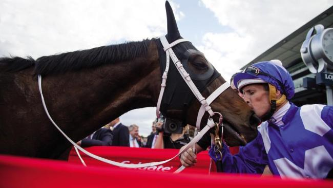 Winx will be chasing her fourth consecutive win in the Cox Plate.