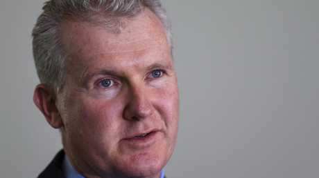 Senior Labor frontbencher Tony Burke says today will be a sombre day. Picture: AAP Image/Lukas Coch