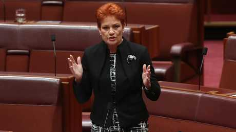 Senator Pauline Hanson's motion seemed to ignore the fact that it's always been OK to be white. Picture: Kym Smith