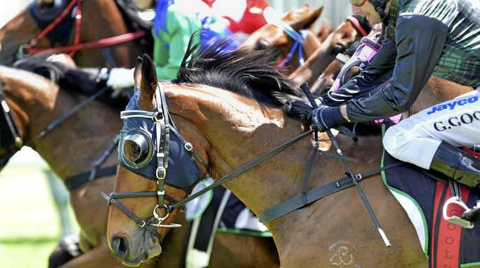 Rockhampton Thoroughbred trainer charged with cruelty