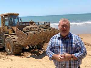 Dead whale dug up on Moore Park Beach after shark sightings