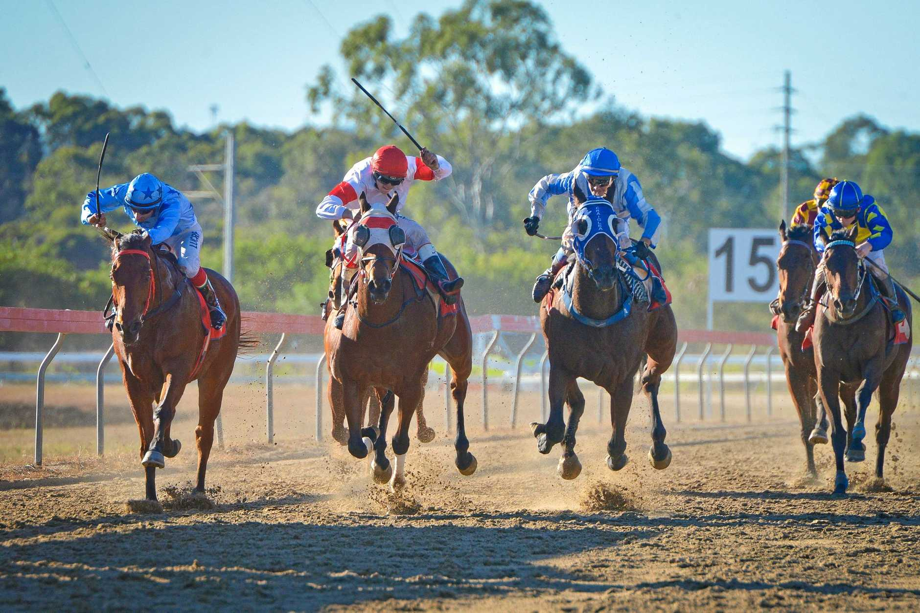 RACE DAY: Ferguson Park will feature an exciting five-race meet this Saturday.