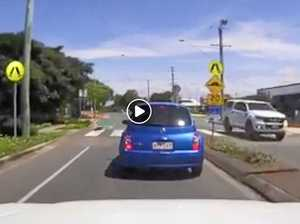 Road-smart bush turkey goes viral