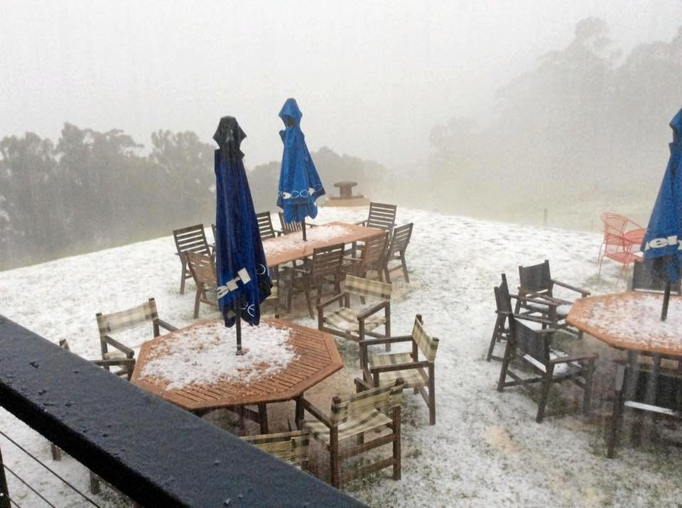 Hail smashed Spring Creek Cafe yesterday.