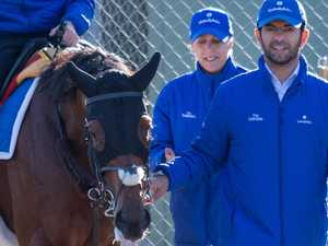 Bin Suroor hoping to rain on Winx's parade
